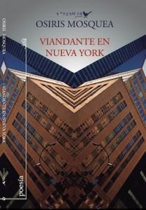 Viandante en Nueva York Portada